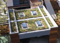 6_rooftop